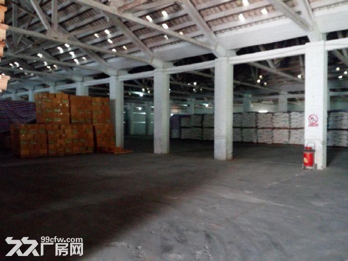 石井八方物流附近仓库出租-图(3)