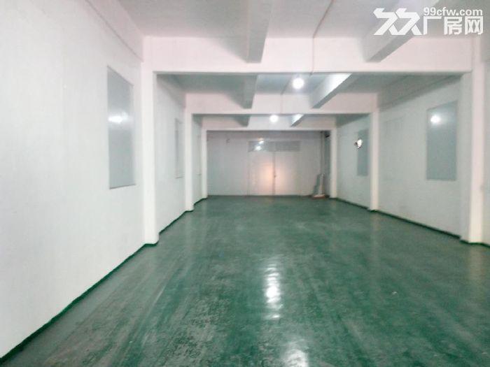 石井八方物流附近仓库出租-图(5)