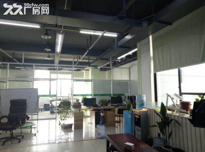 750方厂房出租,适合淘宝、服装、仓储办公等-图(3)