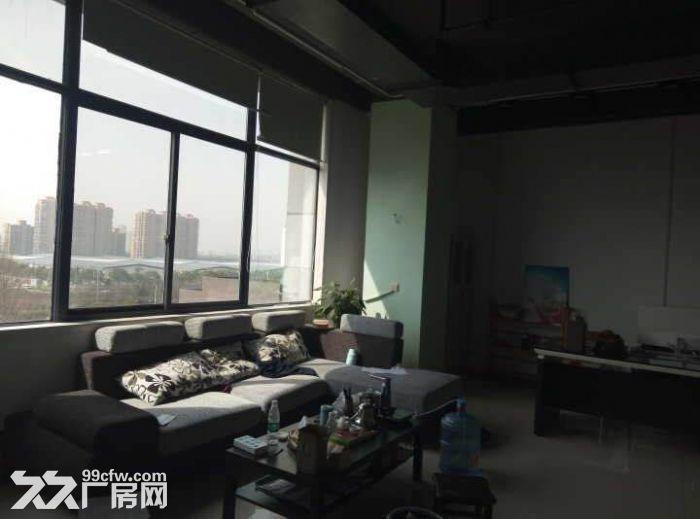 750方厂房出租,适合淘宝、服装、仓储办公等-图(4)
