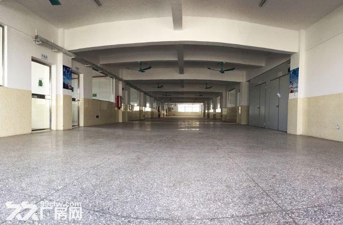 [中介勿扰]新!金湾珠海大道厂房形象好10000平可整租分租-图(3)