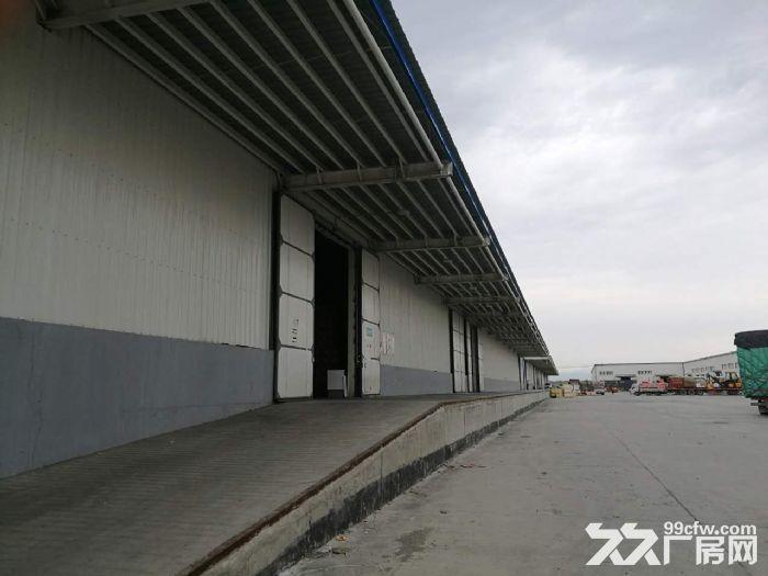 兵团国际物流园和光正仓库、六层办公楼出租-图(2)