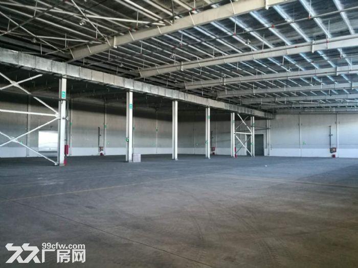兵团国际物流园和光正仓库、六层办公楼出租-图(4)