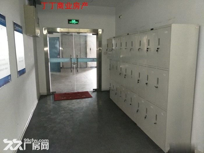 西高新新型工业园地铁沿线精装电子厂房564平米-图(3)
