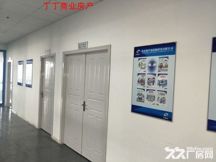 西高新新型工业园地铁沿线精装电子厂房564平米-图(4)