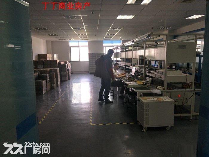 西高新新型工业园地铁沿线精装电子厂房564平米-图(7)