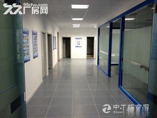 西高新新型工业园地铁沿线精装电子厂房564平米-图(8)