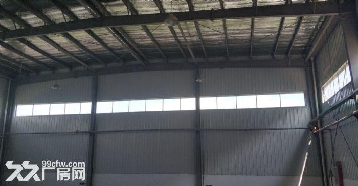 宁河现代产业园10000平米仓储出租可分租-图(2)
