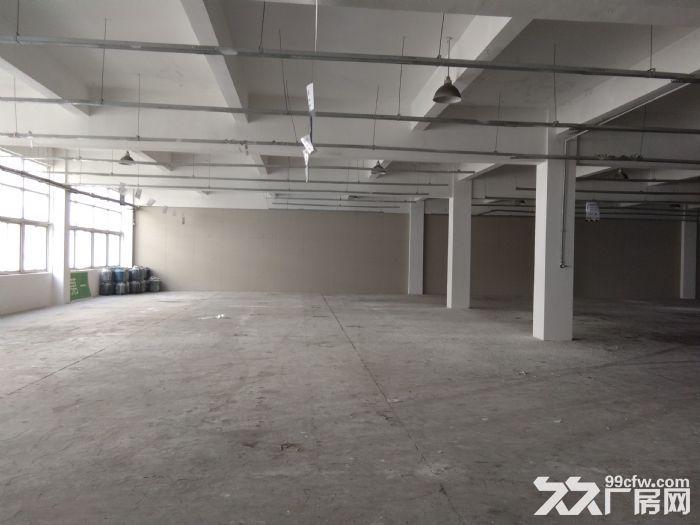 安镇楼上全新厂房3400平米仓库出租可分租1700平米-图(2)