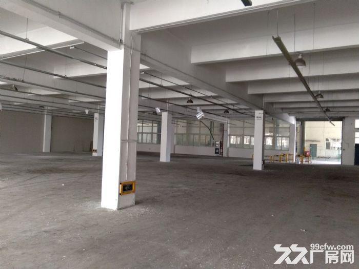 安镇楼上全新厂房3400平米仓库出租可分租1700平米-图(3)