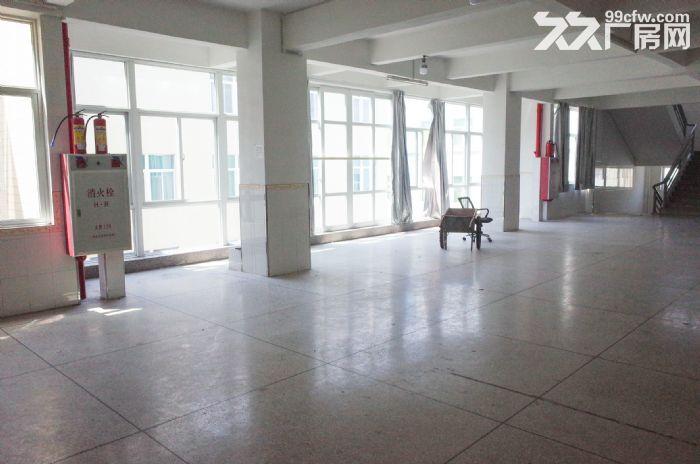 (出租)峡山西沟10000平方厂房仓库,有七层可分层租-图(3)