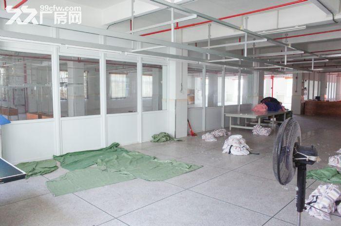 (出租)峡山西沟10000平方厂房仓库,有七层可分层租-图(4)