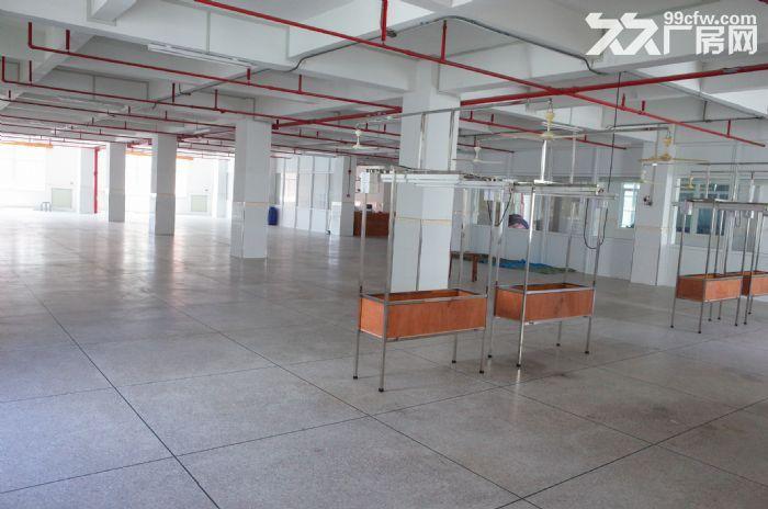 (出租)峡山西沟10000平方厂房仓库,有七层可分层租-图(5)