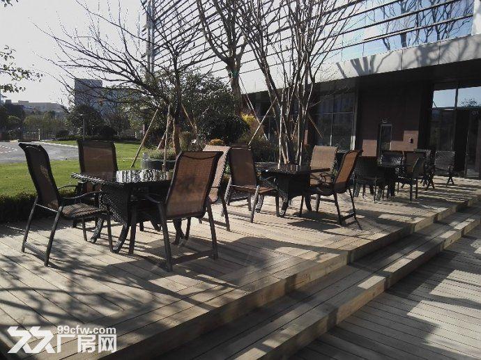 张江药谷−可环评带上下水办公楼带通风井生物医药化学实验室-图(2)