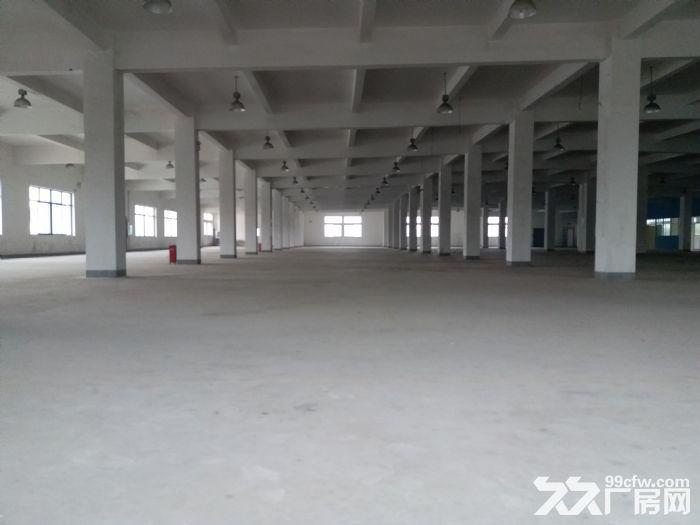 张江药谷−可环评带上下水办公楼带通风井生物医药化学实验室-图(7)