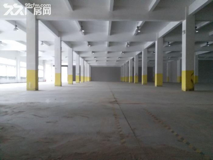 张江药谷−可环评带上下水办公楼带通风井生物医药化学实验室-图(8)