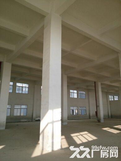 集美标准厂房独门独院出售-图(1)