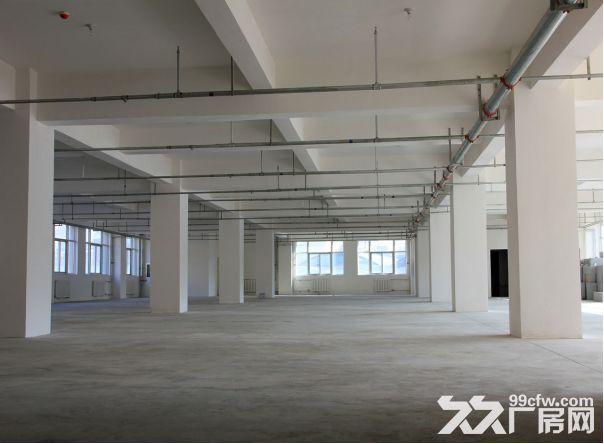 思明园1−5楼各1800平厂房出租可分租-图(2)