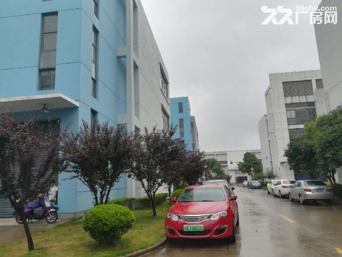 金桥独栋4000平厂房104地块可做研发生产办公-图(3)