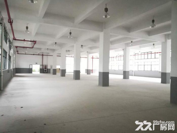 金桥独栋4000平厂房104地块可做研发生产办公-图(2)