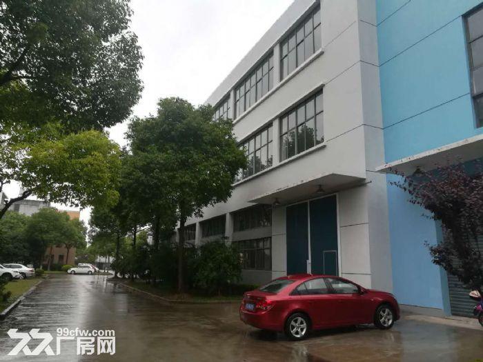 金桥独栋4000平厂房104地块可做研发生产办公-图(4)