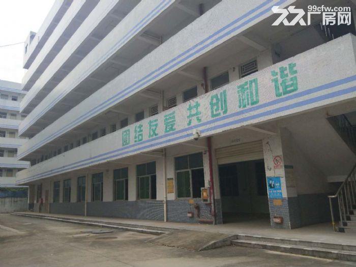 龙岗高新区75000平独院红本厂房出租或分栋分层租-图(1)