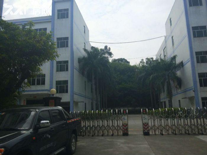 龙岗高新区75000平独院红本厂房出租或分栋分层租-图(2)