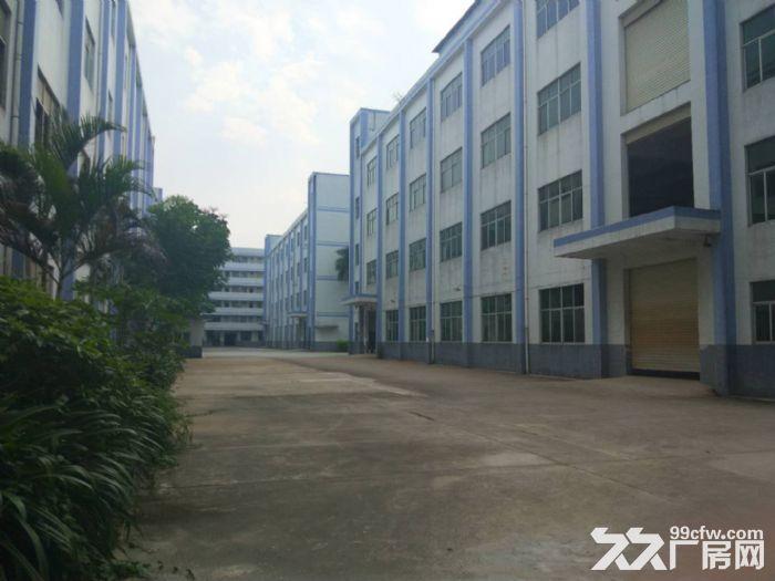 龙岗高新区75000平独院红本厂房出租或分栋分层租-图(3)