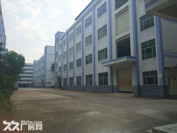 龙岗高新区75000平独院红本厂房出租或分栋分层租-图(4)