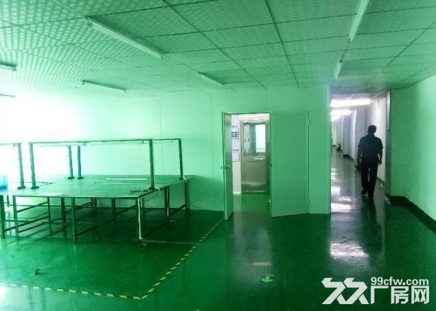 长安新出楼上800平全新千级无尘车间招租-图(3)