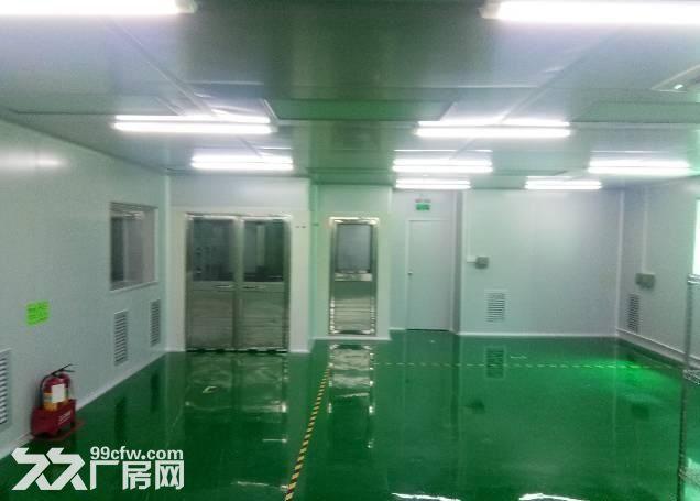 长安新出楼上800平全新千级无尘车间招租-图(4)