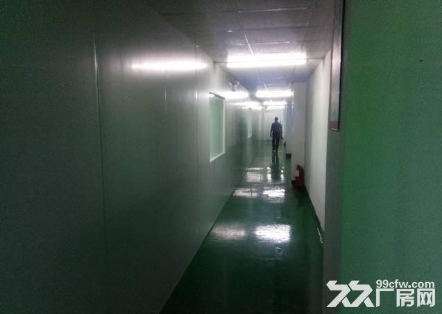 长安新出楼上800平全新千级无尘车间招租-图(5)