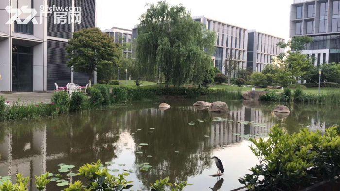 上海智城出租4900平研发厂房可做实验室赠露台-图(2)
