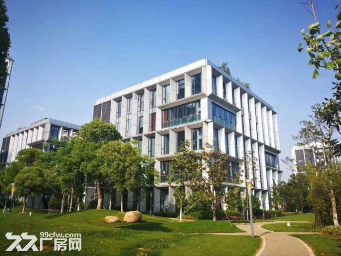 上海智城出租4900平研发厂房可做实验室赠露台-图(3)