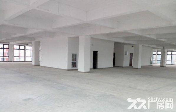 上海智城出租4900平研发厂房可做实验室赠露台-图(8)