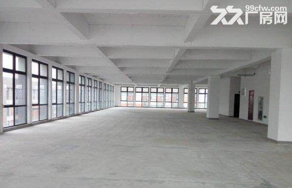 上海智城生物医药研发基地2700平可环评赠露台-图(6)