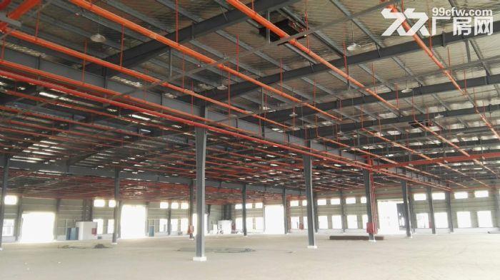 25000平米标准仓库出租-图(2)