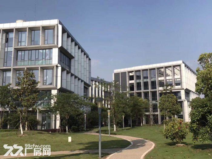 园区直租4900平独栋生物医药产业园超高挑空-图(2)