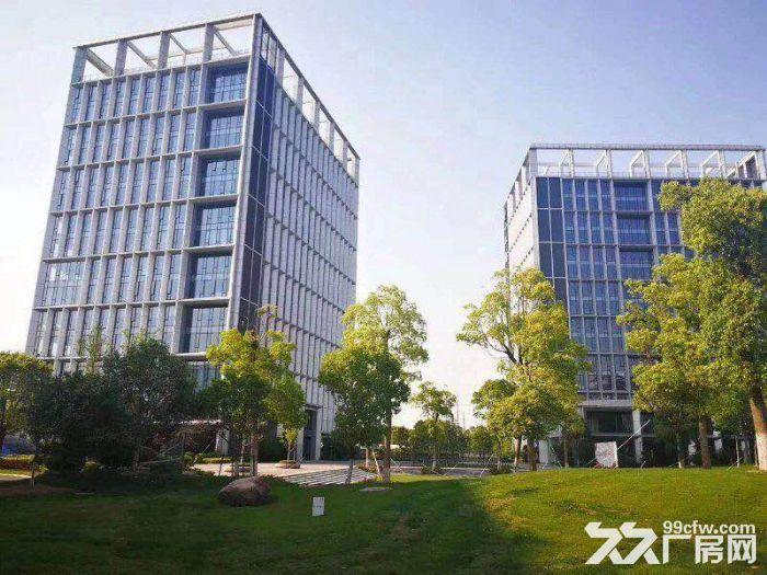 园区直租4900平独栋生物医药产业园超高挑空-图(4)