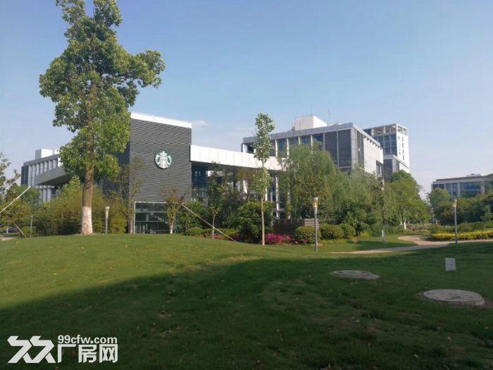 园区直租4900平独栋生物医药产业园超高挑空-图(5)