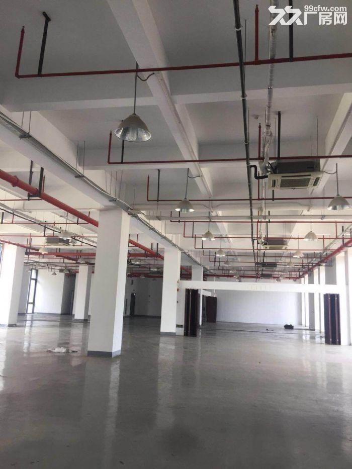 园区直租4900平独栋生物医药产业园超高挑空-图(8)