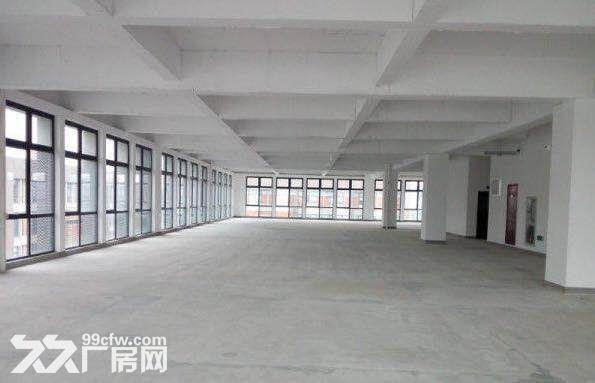 园区直租4900平独栋生物医药产业园超高挑空-图(7)
