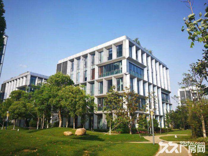 园区直租4900平独栋生物医药产业园超高挑空-图(6)