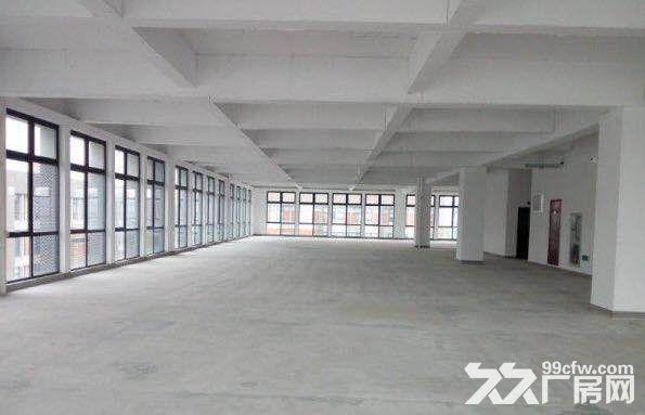 园区直招生物医药研发厂房1022平独栋可分层有环评-图(7)
