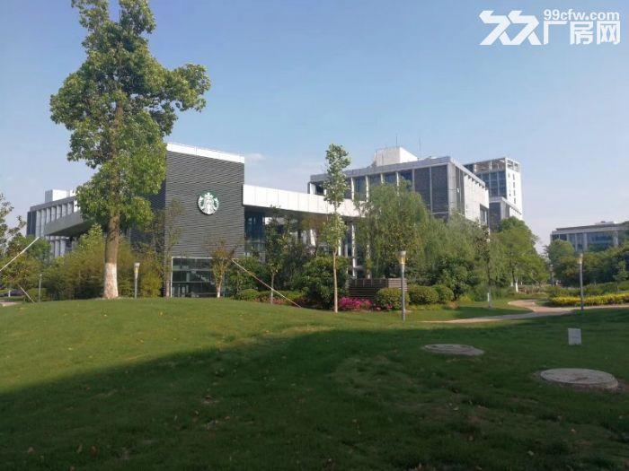 园区直租稀缺独栋实验室小面积573平有环评赠露台-图(5)