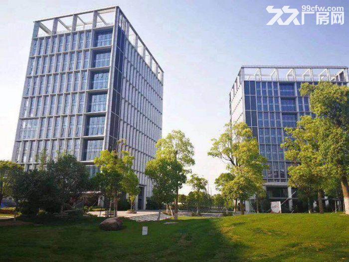 上海智城独栋实验室超高挑空1066平可环评-图(4)