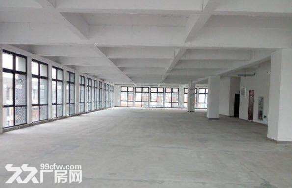上海智城独栋实验室超高挑空1066平可环评-图(6)