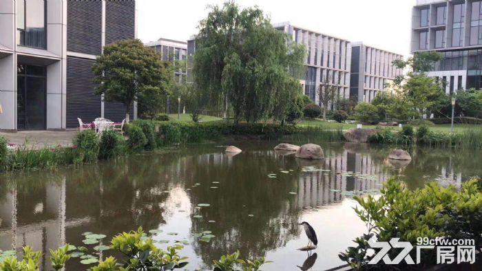 上海智城独栋3600平研发厂房可做实验室有环评-图(7)