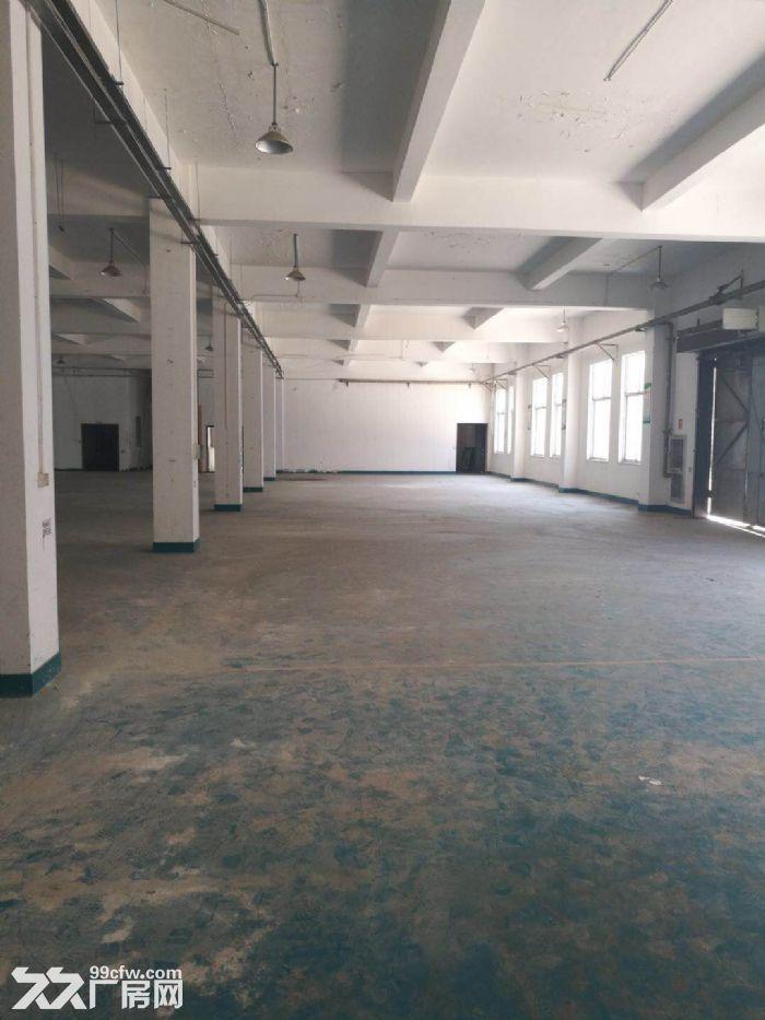 上海智城独栋3600平研发厂房可做实验室有环评-图(8)