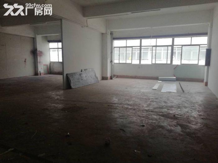 金盘450厂房仓库出租-图(2)